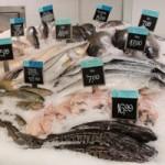 Palestra: Aquicultura provendo o pescado